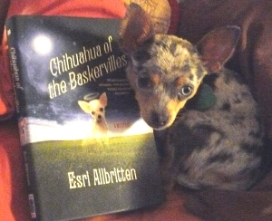 I am the size of a hardback book. You totally want to get a dog like me from your local shelter. KTHNXBYE.